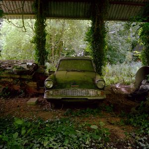 shop of art Zoe Barker Ford Anglia image